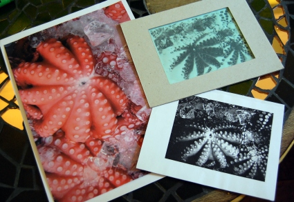 From Photo to Riso Screen