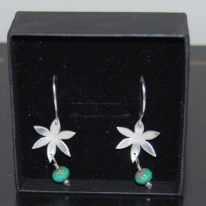 Win these Earrings by Silversea Jewellery